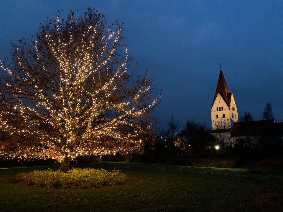 Det lysende træ i Haderslev Dampark Foto: Pressefoto