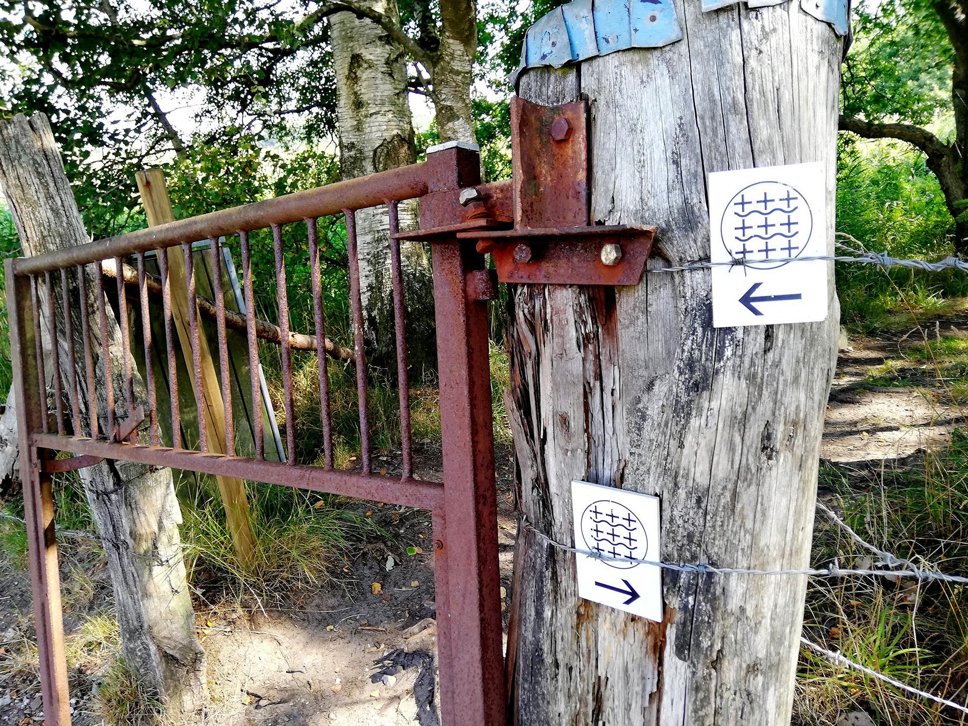En af de mange vandreruter er Caminoen på Haderslev Næs: Foto René Holm